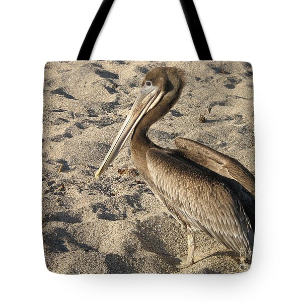 Pelican On Beach Tote Bag by DejaVu Designs