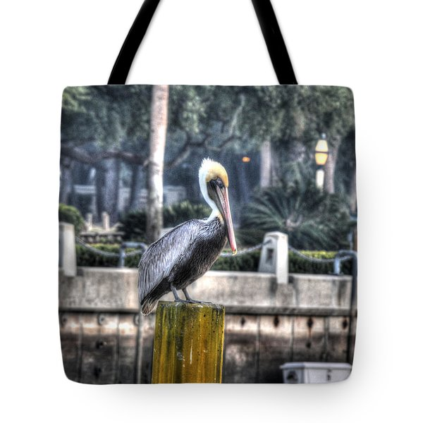 Pelican On Water Post Tote Bag by Dan Friend
