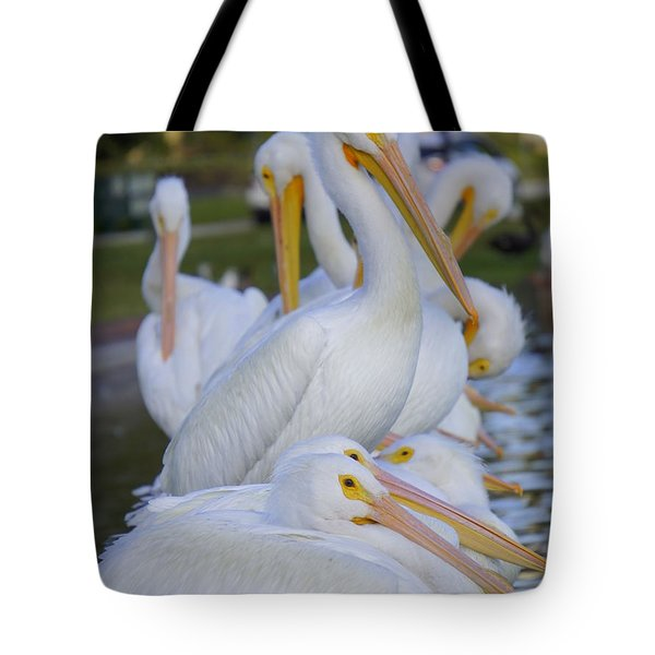 Pelican Pile Tote Bag by Laurie Perry