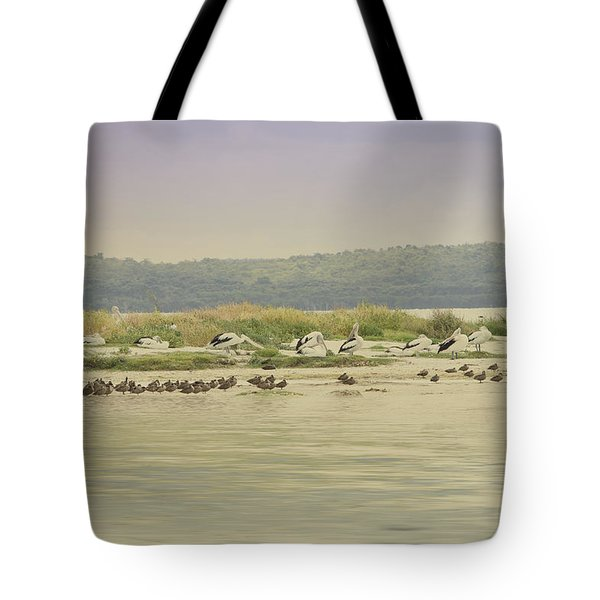 Pelicans At Poddy Shot Tote Bag by Elaine Teague
