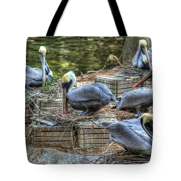 Pelicans By The Dock Tote Bag
