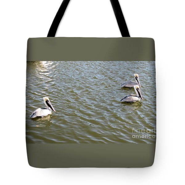 Tote Bag featuring the photograph Pelicans In Florida by Oksana Semenchenko
