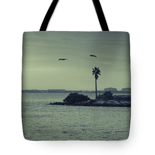 Pelicants And Palm Tote Bag by Marvin Spates