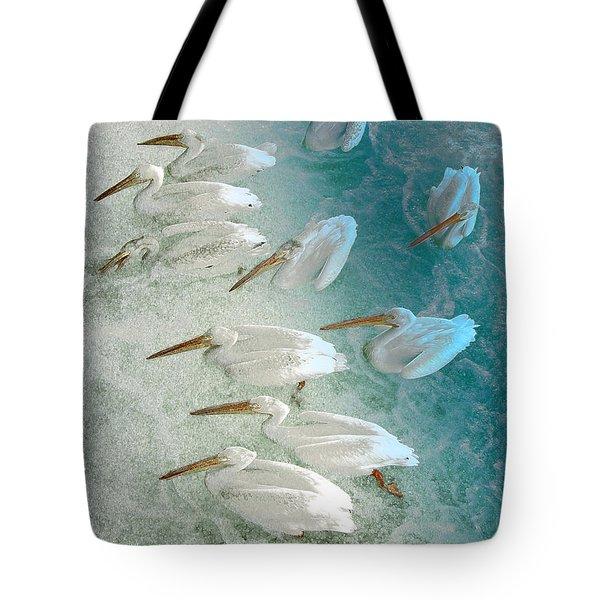 Pellican Frenzy Tote Bag by Stuart Turnbull