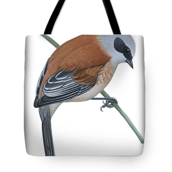 Penduline Tit  Tote Bag by Anonymous