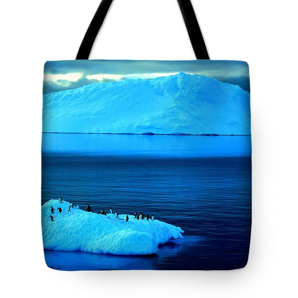 Penguins On Iceberg Tote Bag by Amanda Stadther
