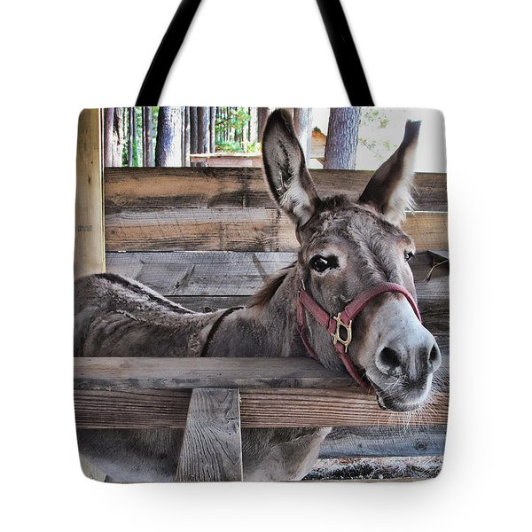Penny Ann Tote Bag