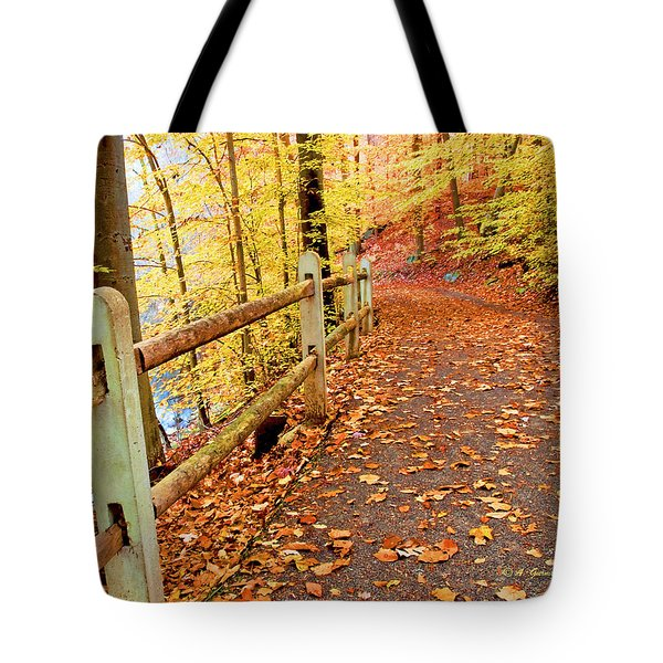 Pennypack Trail Philadelphia Fall Tote Bag