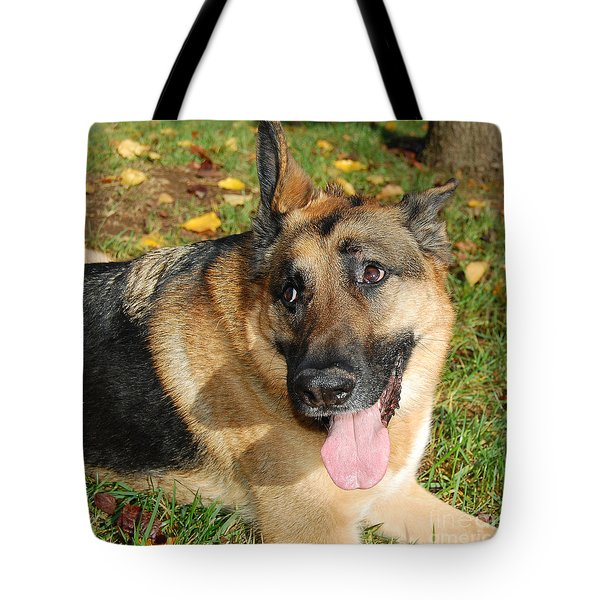 Pensive German Shepherd Tote Bag by Debra Thompson