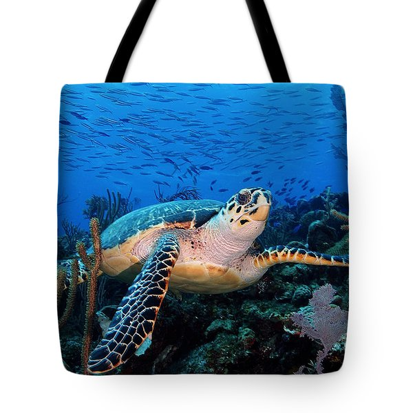 Pepe On Eldorado Tote Bag by Carey Chen