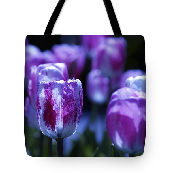 Tote Bag featuring the photograph Peppermint Candies by Joe Schofield