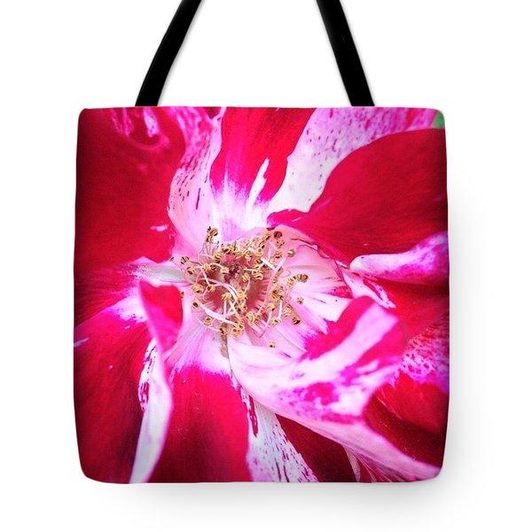 Peppermint Swirls Tote Bag