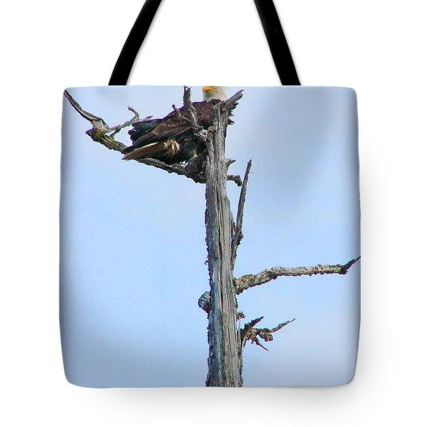 Perched Eagle Tote Bag