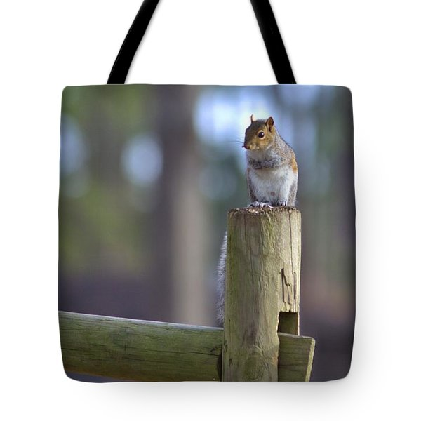 Perched Tote Bag by Gordon Elwell