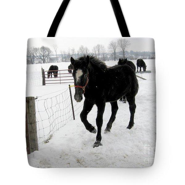 Percheron Horse Colt In Snow Tote Bag