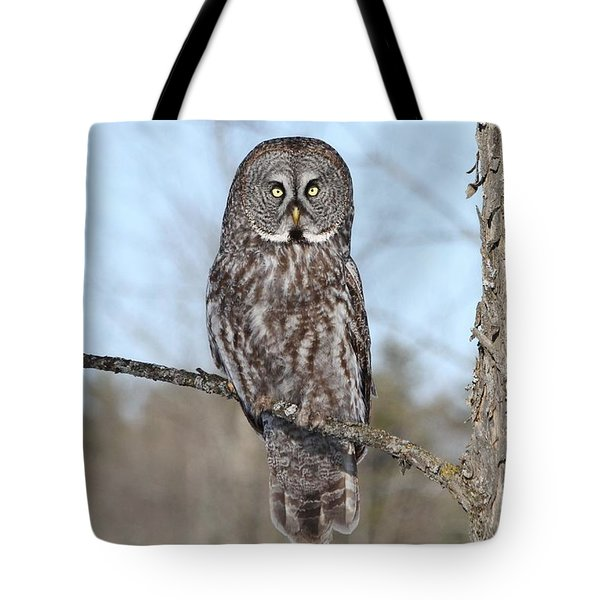 Perching Perfect Tote Bag by Heather King