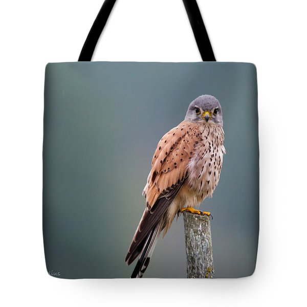 Perching Tote Bag by Torbjorn Swenelius