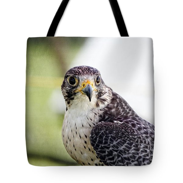 Tote Bag featuring the photograph Peregrine Falcon Bird Of Prey by Eleanor Abramson