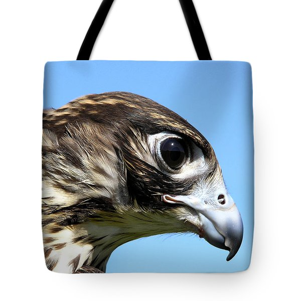 Peregrine Falcon Tashunka Tote Bag by Christina Rollo