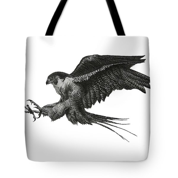 Peregrine Hawk Or Falcon Black And White With Pen And Ink Drawing Tote Bag by Mario Perez