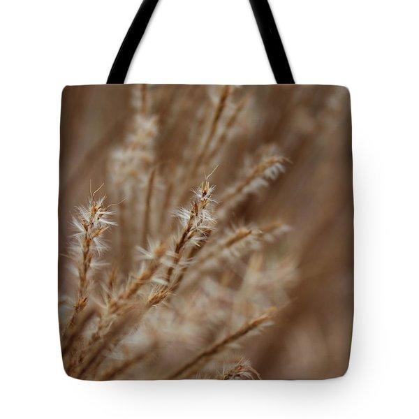 Perennial Grass Tote Bag by Arlene Carmel