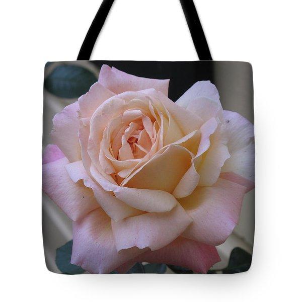 Perfect Blushing October Rose Tote Bag by Barbara McDevitt