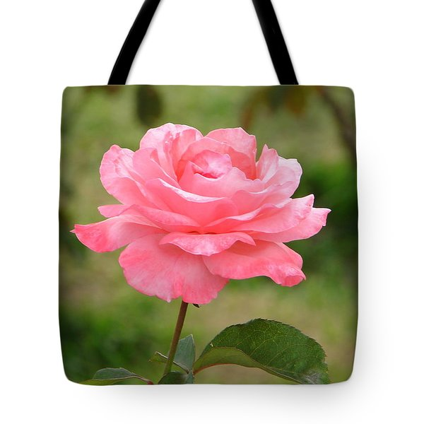 Tote Bag featuring the photograph Perfect In Pink by Lew Davis