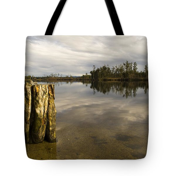 Perfect Lake Tote Bag by Tim Hester