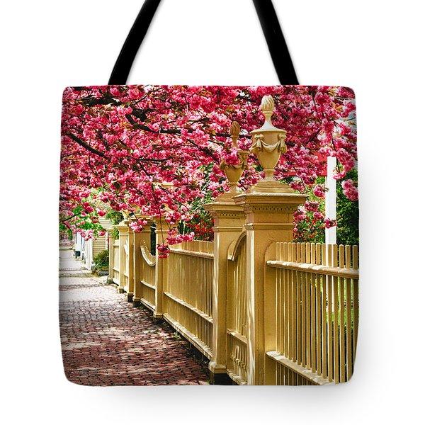 Perfect Time For A Spring Walk Tote Bag