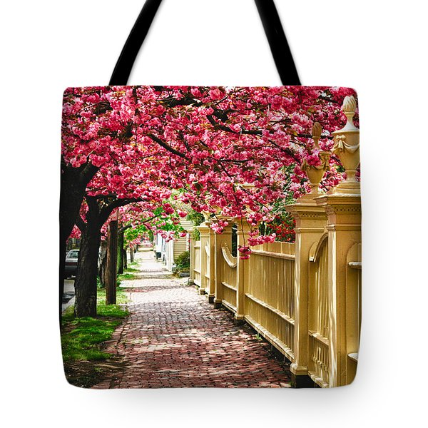 Tote Bag featuring the photograph Perfect Time For A Spring Walk by Jeff Folger