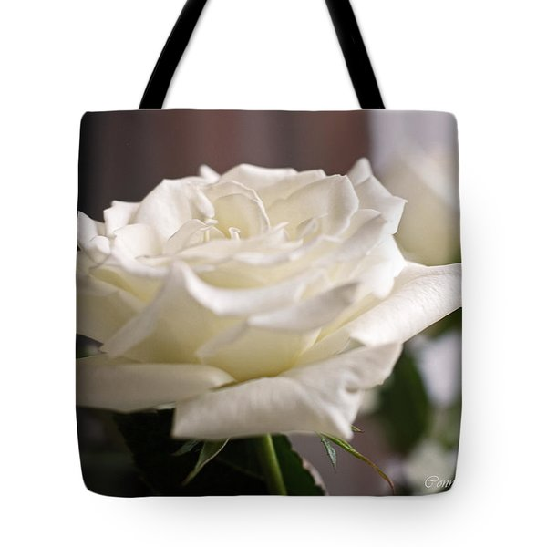 Perfect White Rose Tote Bag