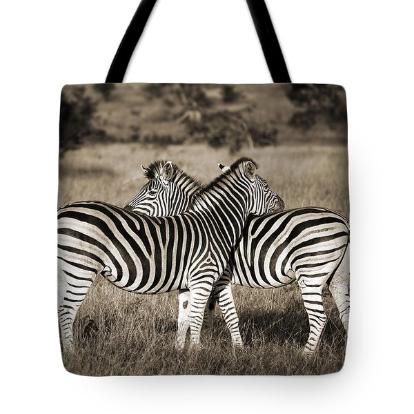 Perfect Zebras Tote Bag by Delphimages Photo Creations