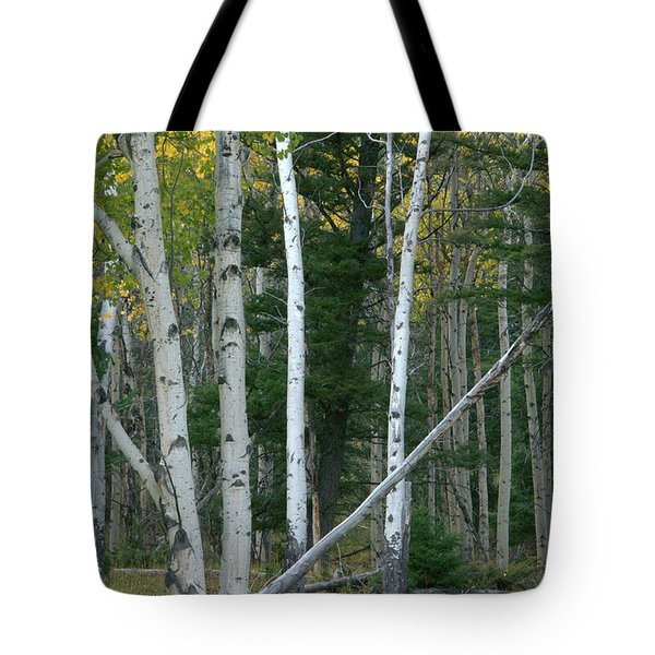 Perfection In Nature Tote Bag