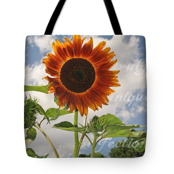 Perfection In The Eye Of The Beholder Tote Bag