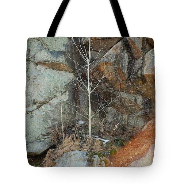 Tote Bag featuring the photograph Perseverance by Mim White
