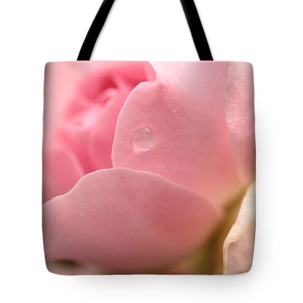 Persuasion Tote Bag
