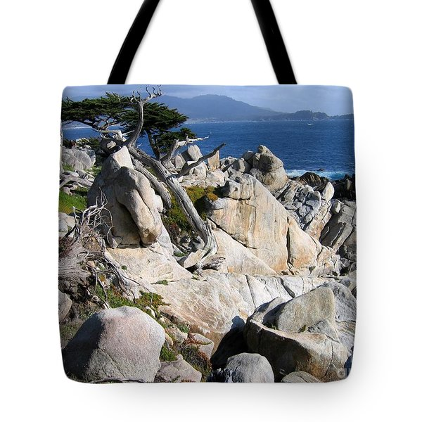 Tote Bag featuring the photograph Pescadero Point by James B Toy