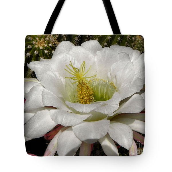 Tote Bag featuring the photograph Petals And Thorns by Deb Halloran