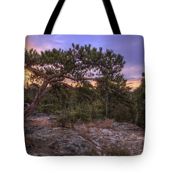 Petit Jean Mountain Bonsai Tree - Arkansas Tote Bag