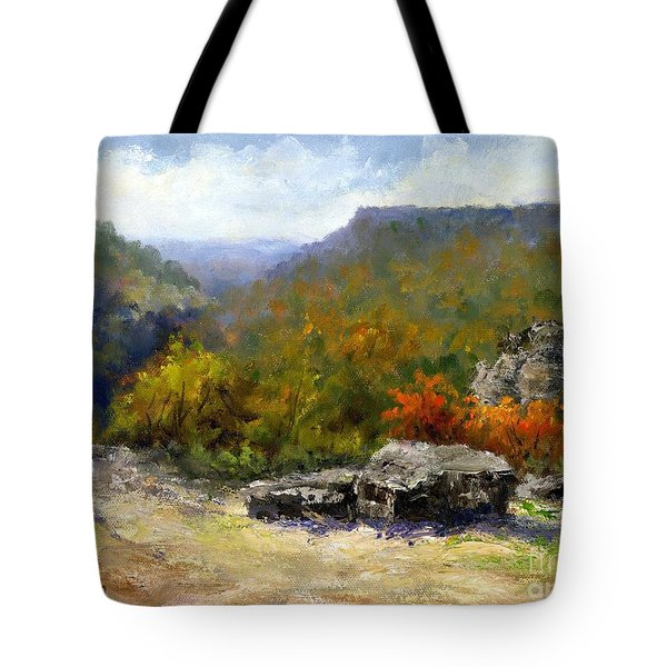 Petit Jean View From Mather Lodge Tote Bag by Virginia Potter