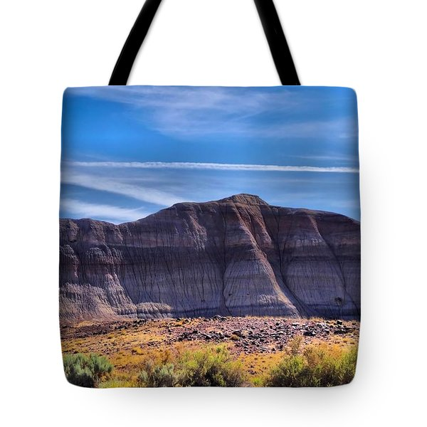 Petrified Forest Landscape Tote Bag