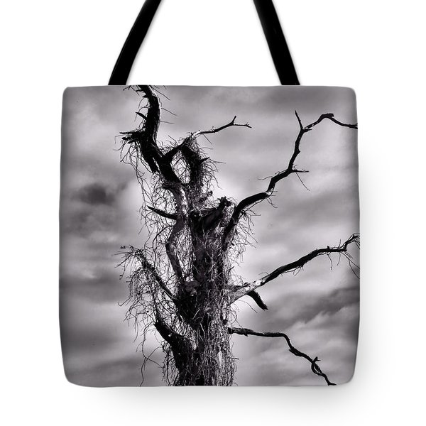 Petrified Tree Tote Bag