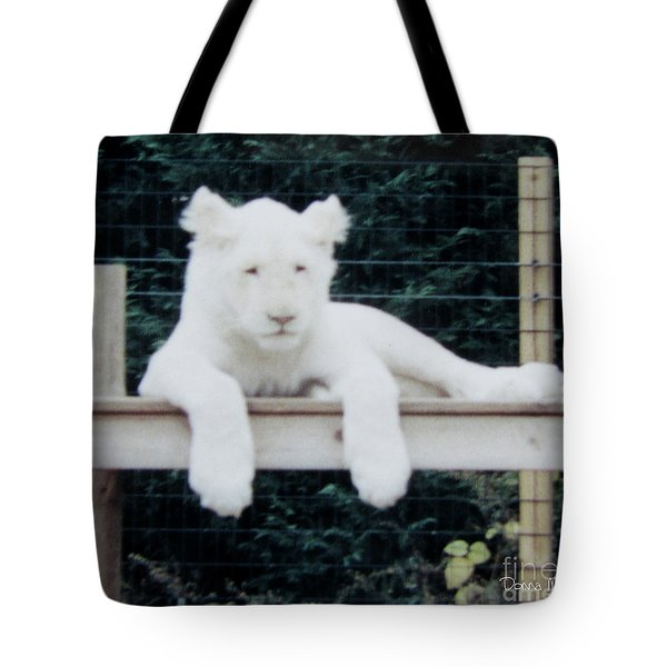 Tote Bag featuring the photograph Philadelphia Zoo White Lion by Donna Brown