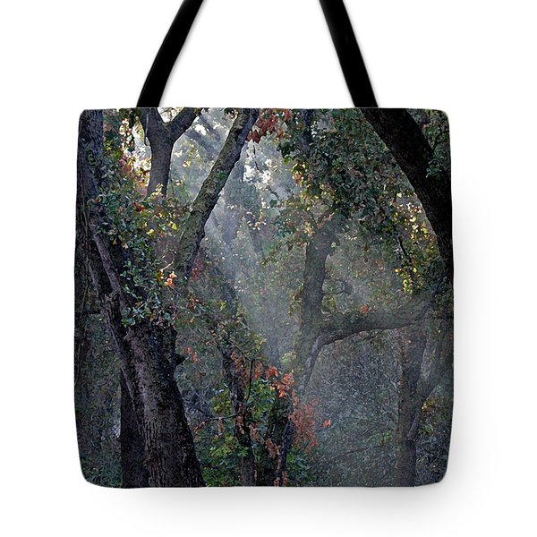 Phorest Lights Tote Bag