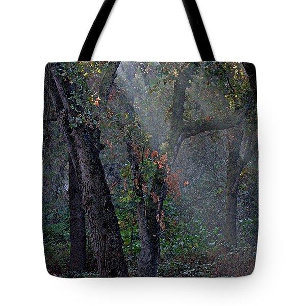 Phorest Lights Tote Bag