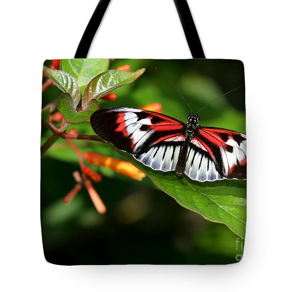 Piano Key Butterfly On Fire Bush Tote Bag