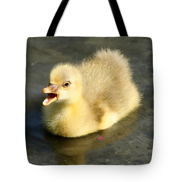 Tote Bag featuring the photograph Pick Me by Bob and Jan Shriner