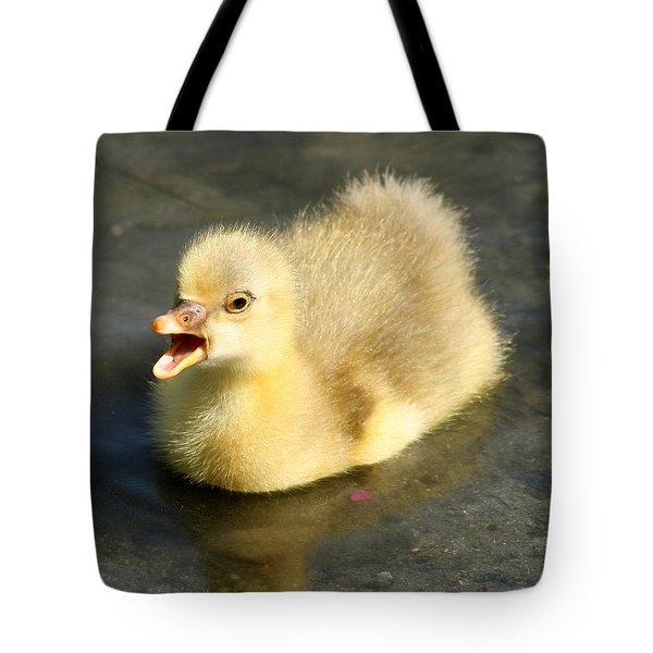 Pick Me Tote Bag by Bob and Jan Shriner