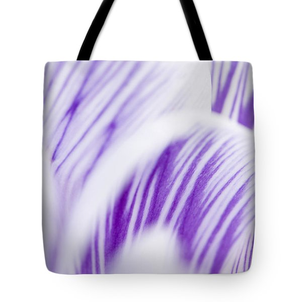 Pickwick Tote Bag by Anne Gilbert