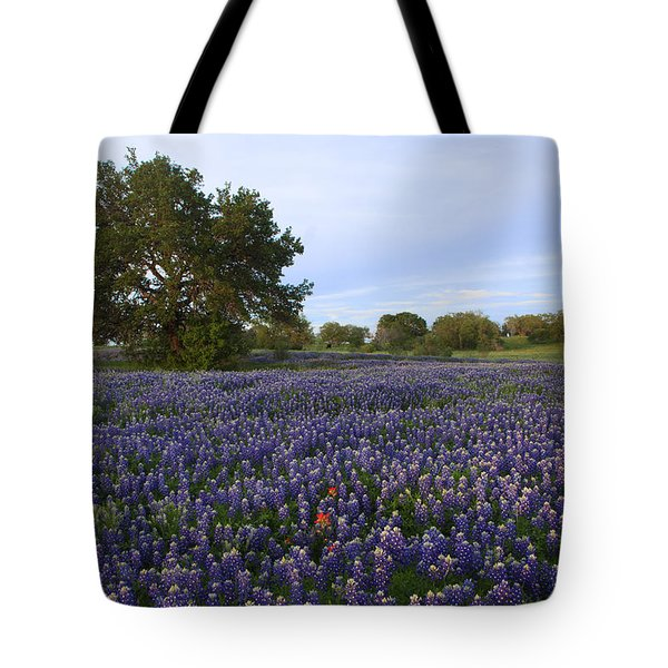 Tote Bag featuring the photograph Picture Perfect by Susan Rovira